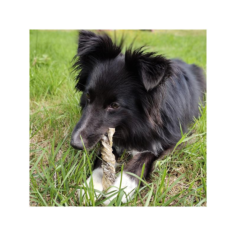 Sticks de peaux de morue friandise naturelle pour chiens