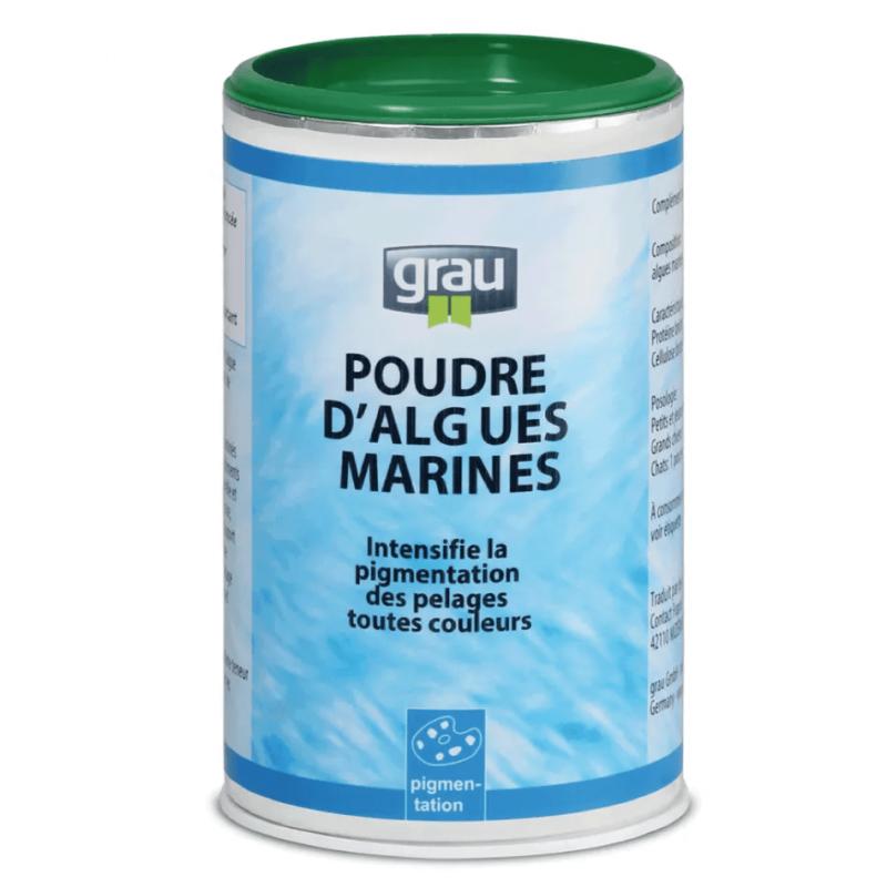 poudre d'algues marines naturelles complément alimentaire chien