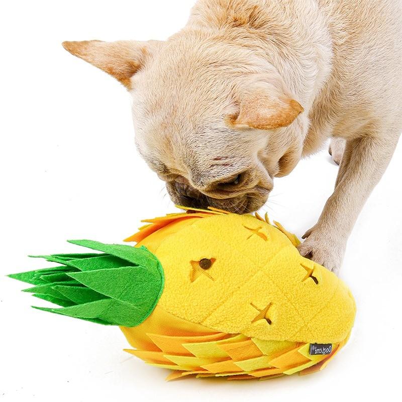 jeu pour occupation chien snuffle mat
