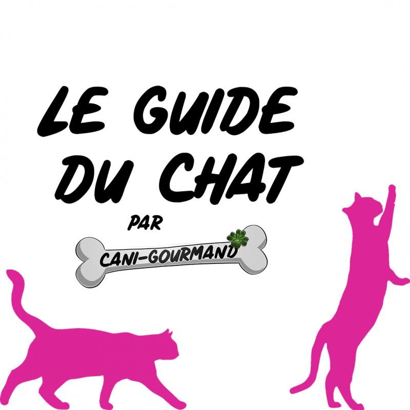 Guide d'astuces pour chats