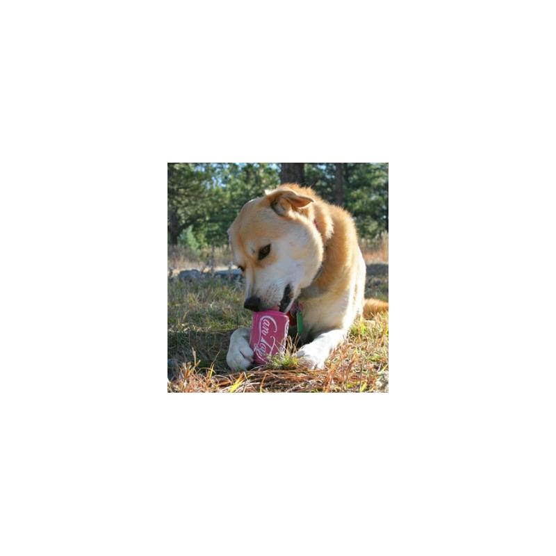 Jeu d'occupation et de mastication pour chien/chiot Can Toy à puppy