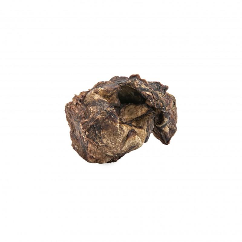 Cubes de poumon de bœuf friandise 100% naturelles pour chien recompense chiot education positive