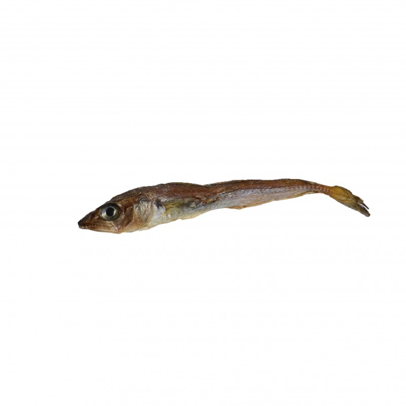 friandise 100% naturelle recompense chiot chien poisson eperlan merlan séché
