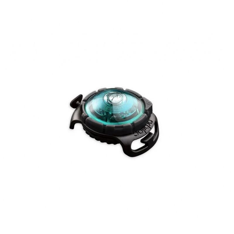 orbiloc lampe chien sécurité harnais sport canin canicross hiver bleu turquoise